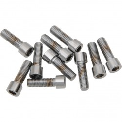 "CHROME SMOOTH SOCKET HEAD BOLTS 1/4""-28 x 3/4"" HARLEY DAVIDSON"