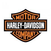 Brake pad for Harley Davidson