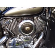 Motorcycle custom air filter cover, eagle air filter cover