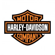 Saddlebags supports Harley Davidson motorcycle
